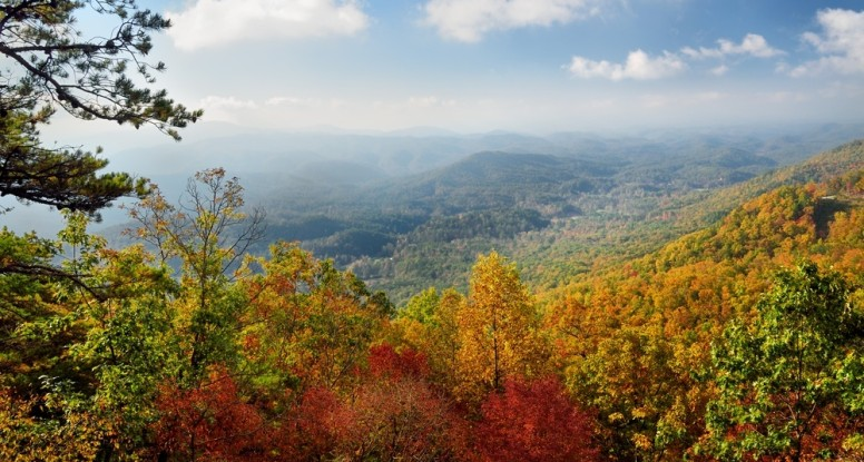 View of the fall colors in the Smoky Mountains