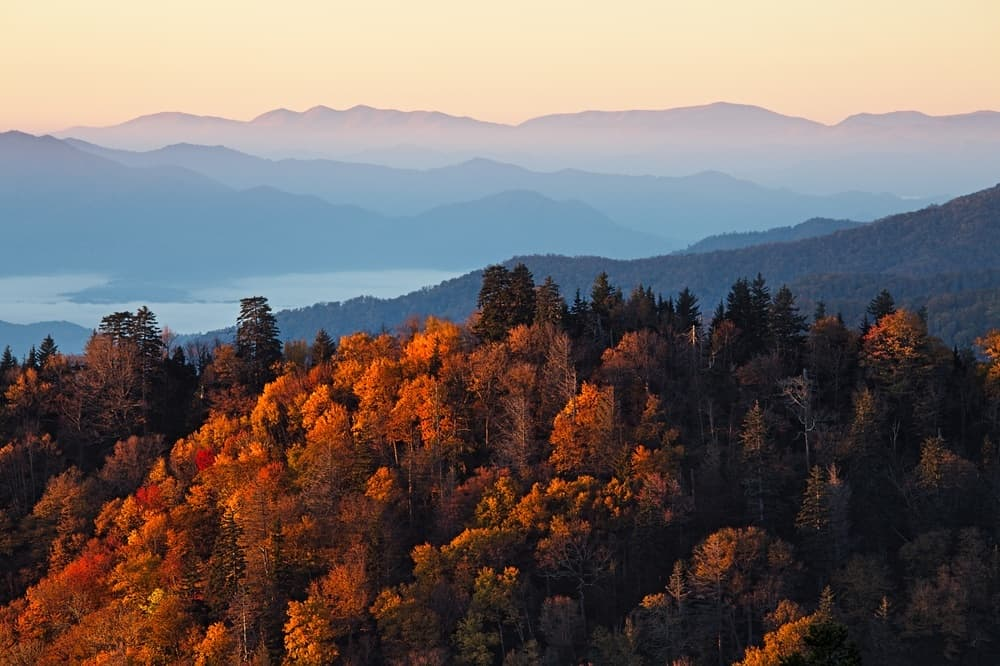Photo of the fall colors in the Smoky Mountains.