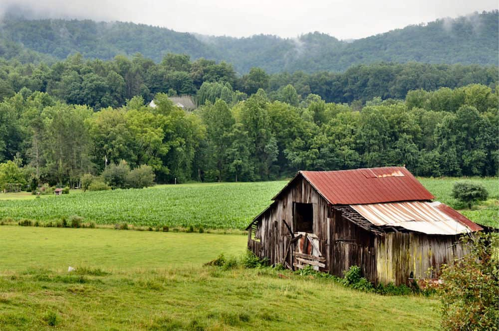 4 Vacations To Enjoy At Our Secluded Cabins In Wears Valley Tn