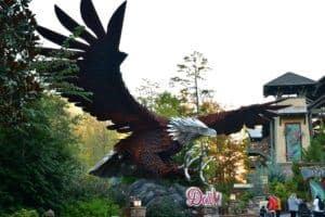 wild eagle at dollywood