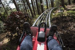 person on a mountain coaster
