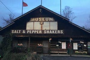 salt and pepper museum