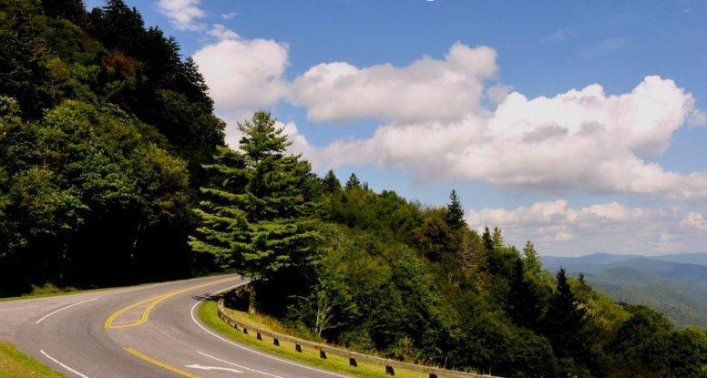 newfound gap road