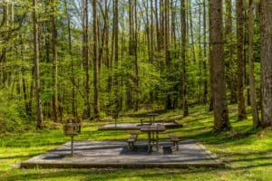 picnic area smoky mountains
