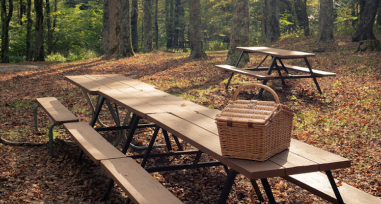 smoky mountain picnic area